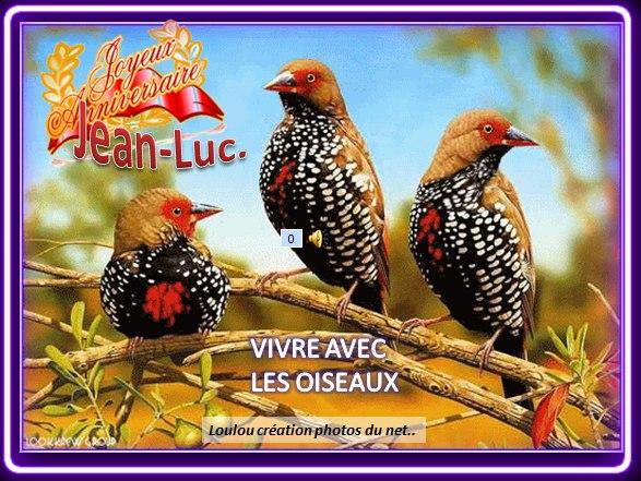 Joyeux Anniversaire Jean Luc Les Oiseaux